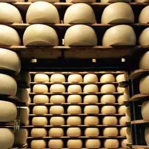 Parmigiano Reggiano DOP Giansanti di Muzio